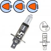 Ampoule 12V 55W H1 P14.5S