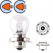 Ampoule 6V 15W P26S