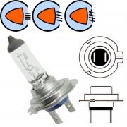 Ampoule 12V 55W H7
