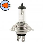 Ampoule 12V 35/35W PX43T