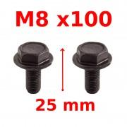 Vis de serrage manivelle M8x100
