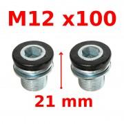 Vis de serrage manivelle M12x100