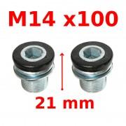 Vis de serrage manivelle M14x100